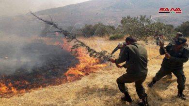"""صورة """"مجهول"""" يحرق جبال العلويين"""
