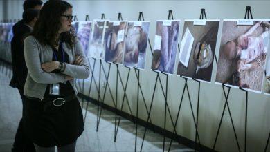 صورة الخارجية السورية ترد على اعتزام هولندا تقديم دعوى قضائية ضد الأسد