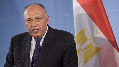 """صورة """"مصر"""" تؤكد دعمها للحل السياسي بسوريا"""