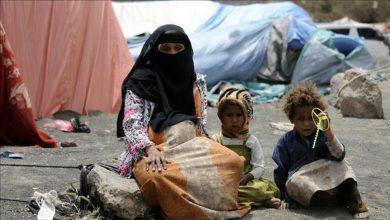 صورة حوالي 28 ألف أسرة يمنية نزحت هذا العام