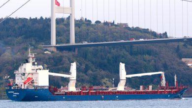 """صورة ناقلة شحن سورية ترسو في ميناء """"توزلو"""" التركي"""