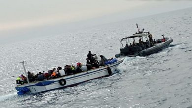 صورة الجيش اللبناني يضبط 60 مهاجراً شمالي البلاد