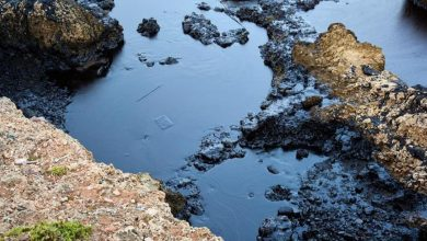 صورة تسرب نفطي يهدّد بكارثة بيئية في الساحل السوري